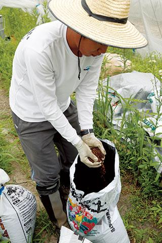 有機JAS対応の肥料や培養土