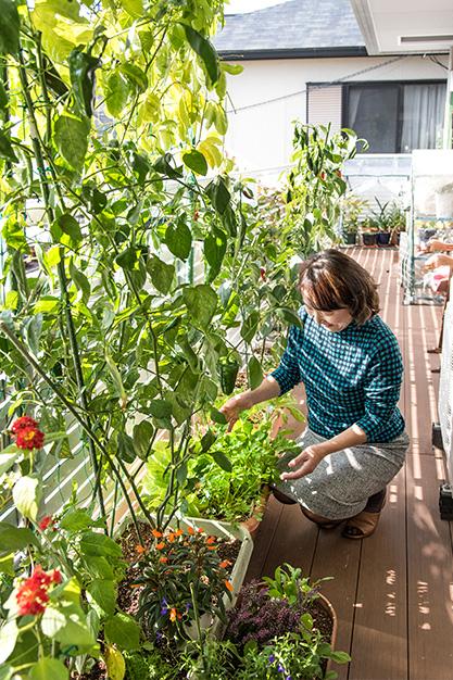 野口みどりさん 65歳・広島市 取材/南野ゆうり 撮影/野澤 廣 自宅2階のベランダで。菜園には花々も植えられていて、見た目にも心安らぐ場所になっている