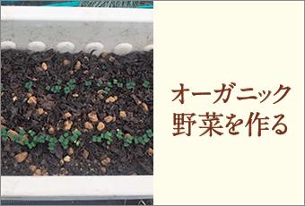 inoti90_organic_top