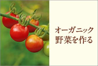 inoti92_organic_top