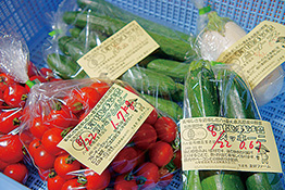 厨房に入荷した無農薬・有機栽培の野菜