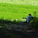 hidokei98_kaisetu_ninki