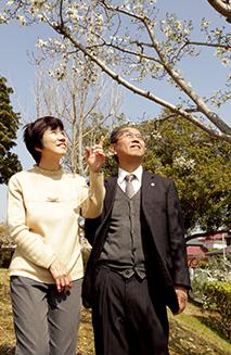 休日の春の日、生駒市の自宅に戻って、由実さんと散歩を楽しむ