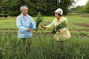 熊谷正一郎(くまがい・しょういちろう)さん│78歳│宮城県栗原市 取材/多田茂樹 写真/近藤陽介 熊谷さんと妻の澄子さん。畑で実った大麦を手に
