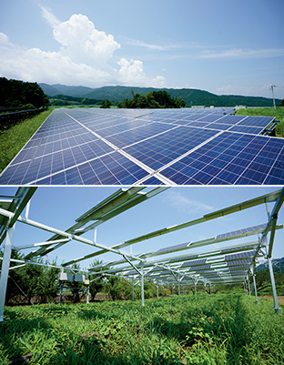 上:市民の出資によるメガソーラー発電所(小田原市久野)/下:下の畑でサツマイモを育てるソーラーシェアリング(小田原市下曽我)