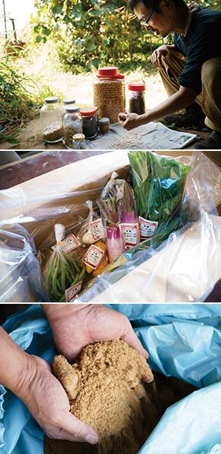 上:自家採種した種はよく乾燥させて、瓶に保存する/中:旬の新鮮な野菜を丁寧に包んで出荷する/下:米糠に竹炭を混ぜて発酵させた植物性の肥料