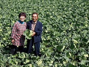 「いつも、『キャベツさん、ありがとう』と声をかけながら手入れをするんですよ」。収穫時期を迎えたキャベツ畑で、夫の喜六さんと