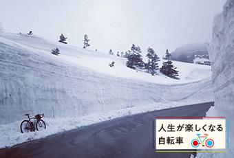 inoti113_jinsei_top