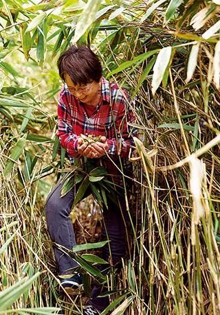 両手いっぱいに収穫したタラの芽。この後は天ぷらにして、教区の友人たちと春の味覚を堪能した