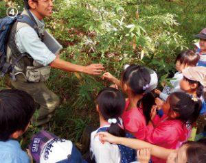 小学校低学年の児童と保護者向けの「きのこ・たけのこ里山学校」