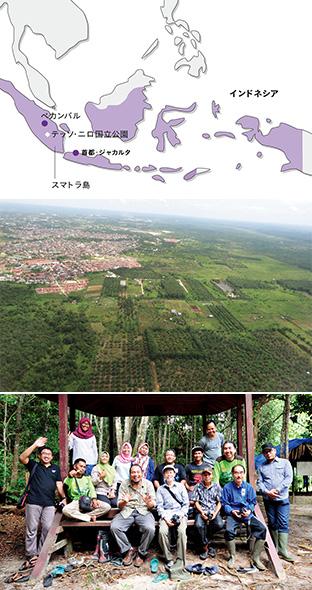 中:左奥はペカンバル市街、右奥から手前にかけてアブラヤシ農園が広がる/下:WWFスタッフや公園周辺でエコツアーを企画・運営している地元住民とともに
