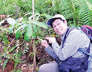 2016年1月に植樹された「バラム」は、成人の腰の高さにまで生長していた。「苗木と添え木を結びつける紐は、周囲に生えた蔓を代用している様子を見て、苗木に対するスタッフの優しい心遣いと丁寧な育林活動に感動しました」と永井さん