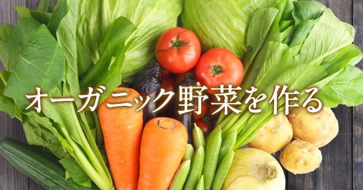 inoti88_organic_title_a