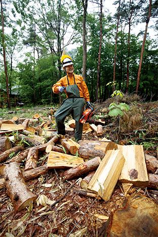 間伐された木を一定の長さに切りそろえ、薪にしていく。「森がきれいになって、地主も喜び、私も必需品の薪が手に入るので一石二鳥です」と語る工藤さん