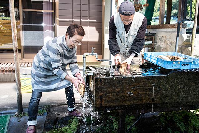 川尻尋子(かわしり・ひろこ)さん 67歳・岐阜県下呂市 山から引いた水を満たした洗い場で、夫の尚司さんと収穫したばかりのヤーコンの泥を落とす 取材/南野ゆうり 撮影/野澤 廣