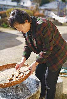 冬の陽が射す庭で、椎茸の天日干しを作る