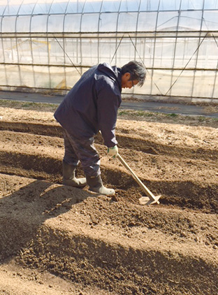 無農薬、無化学肥料による野菜作りに励んでいる塚越さん