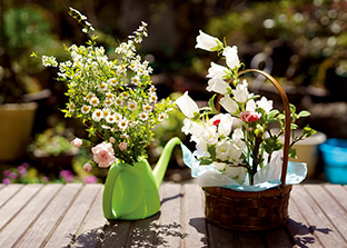 縁側に置かれた花が光を浴びて輝く。「見た人が、ぱっと笑顔になってくれると嬉しいですね」
