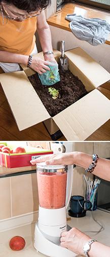 上:廊下に置かれている段ボールコンポスト。生ゴミを細かく刻んで毎日入れる。水分の多いものや魚などは乾燥させてから入れている。東近江市が販売するダンボール箱を利用している/下:小梶さんお手製のトマトジュース。採れたてトマトの美味しさが凝縮