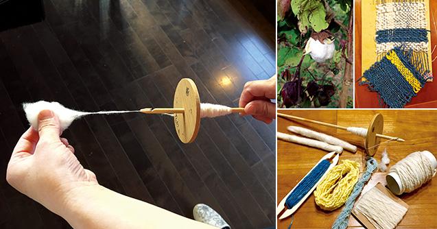 コマと呼ばれる手紡ぎ機を回して、綿から糸を紡いでいく。「小学生の息子も、遊びながら楽しそうに紡いでくれます」/上中:自宅で種から育てた和綿。和棉は下向きに結実する。洋棉は上向きに結実/上右:ダンボールを使ってコースターを手織りする。竹の物差しで糸を詰める/下右:手紡ぎ機と、紡ぐために綿を整えた篠。下は紡いだ糸(左から還元法による藍の生葉染、クチナシ染、藍の生葉染、最近の紡ぎ糸、最初の頃の太い紡ぎ糸)
