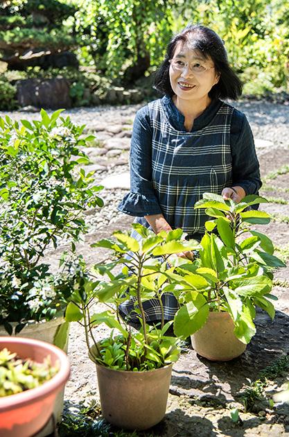 安田富美子さん 64歳・宮崎県門川町 緑あふれる自宅の庭で。手前の鉢ではマザーリーフが元気に葉や茎を伸ばしている 取材/南野ゆうり 撮影/野澤 廣