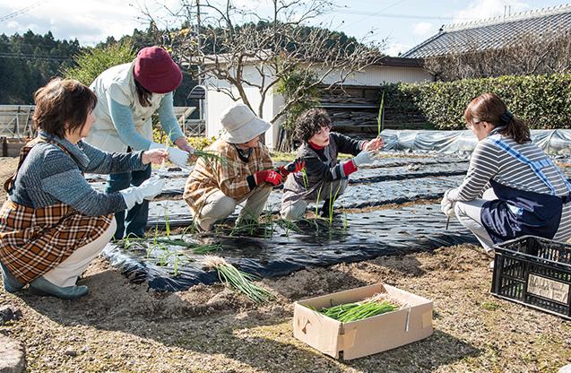 粂田多枝子(くめた・たえこ)さん  69歳・滋賀県甲賀市 「ありがとうございます」と唱えながら、この日は1500本の苗を植えた。右から2人目が粂田さん 取材/南野ゆうり 撮影/野澤 廣
