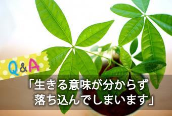 hidokei109_Q_A_top_a