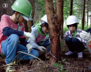 山林で森づくりを体験する「王子の森・自然学校」