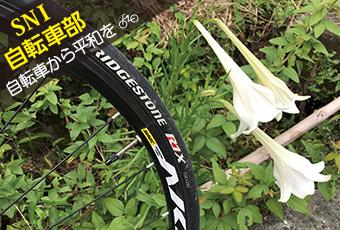 hidokei116_jitensha_top