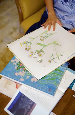 ハルジオンのスケッチ(上)と、完成間近の作品(下)。細部までしっかり観察し、その花の美しさを見つけ出す