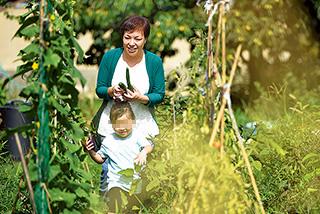様々な野菜が植えられている自宅の畑で、お子さんと収穫