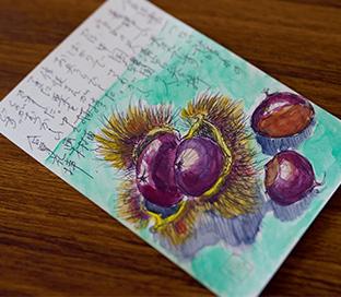 秋の味覚、栗をハガキに描き、言葉を添えて送る