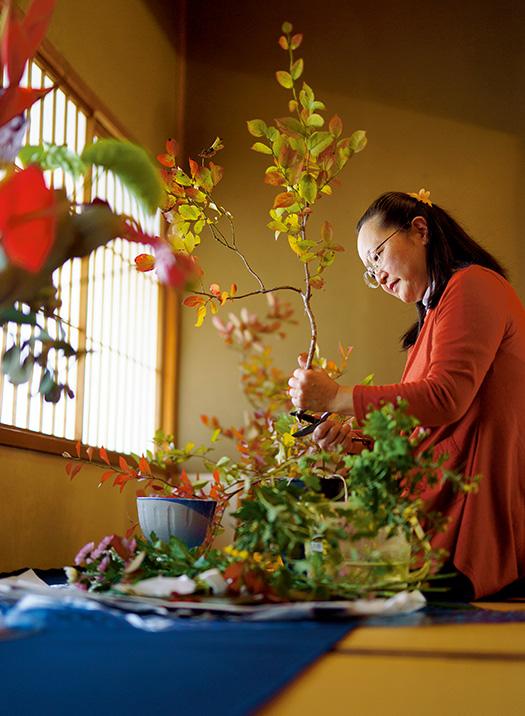 杉浦貴弥子(すぎうら・きみこ)さん│60歳│愛知県半田市 紅葉したブルーベリーの枝を活ける。「花の一つ一つ、枝の一本一本が重ならないように、それぞれが美しく見えるよう活けていきます」 取材/久門遥香(本誌) 写真/堀隆弘