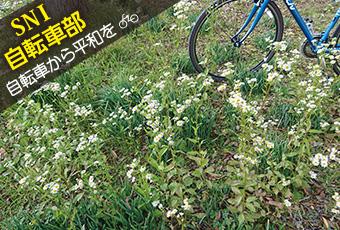 hidokei121_jitensha_top