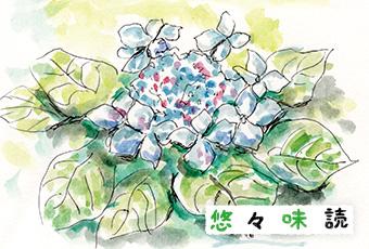 inoti125_yuyu_top