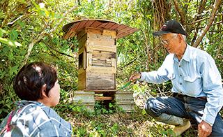 夫の菊雄さんが設置したニホンミツバチの巣箱。昨年は2升5合の蜂蜜が採取できた