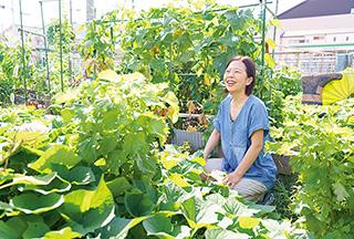 借りている市民農園で。夏の太陽の下、青々と葉を茂らせる野菜の生長ぶりに笑みがこぼれる