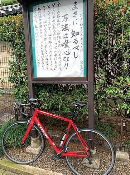 京都の東寺にて
