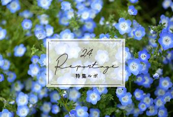hidokei132_rupo_top_a