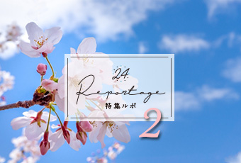 hidokei133_kaisetu2_top_a