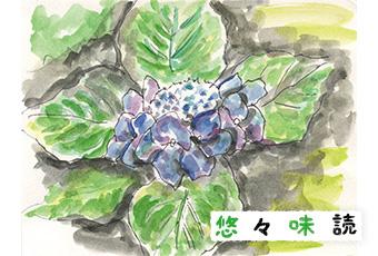 inoti135_yuyu_top