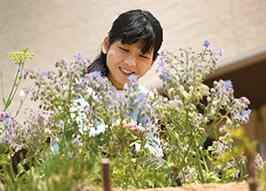 「ボリジというハーブの一種を育てていて、葉や花をサラダやスープに使っています」